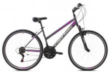 """Trekové jízdní kolo Capriolo SUNRISE L 28""""/18HT silver-pink"""